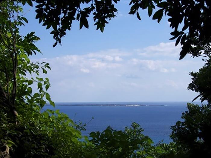霜月も 未だ泳げるぞ沖縄県1