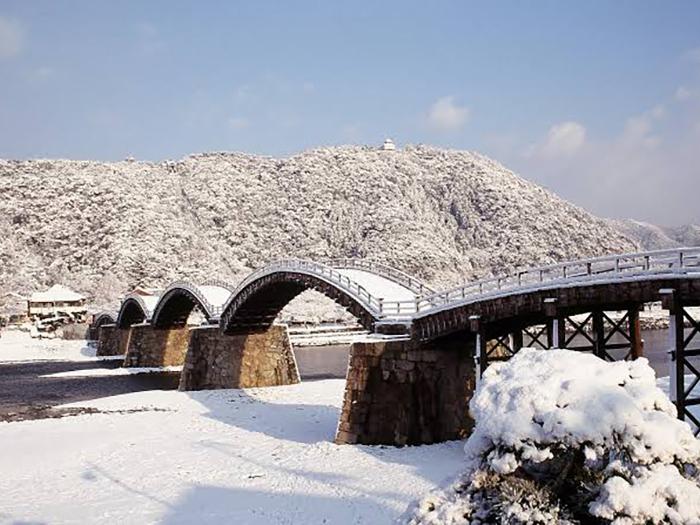 河豚に維新 今年も冬の長州へ6