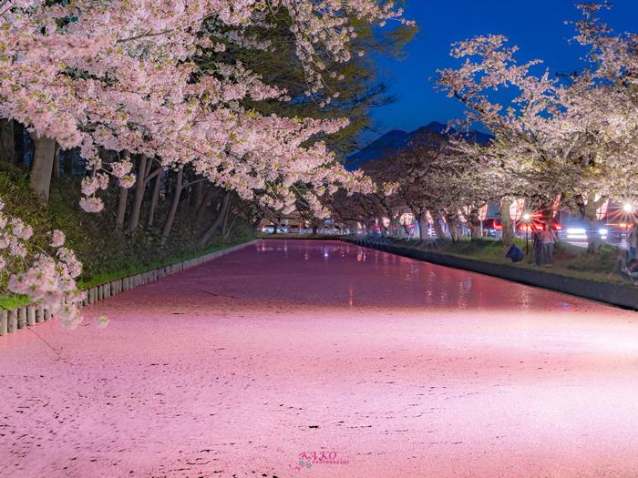 春連休 桜と共に東北へ2