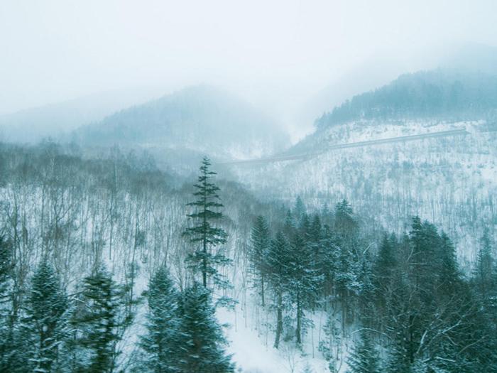 温暖化 雪を求めて山陰へ2